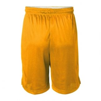 Champion Men's Mesh Short – 9″
